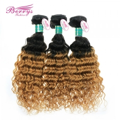 Ombre Hair Extension Brazilian Virgin Hair Deep Wave two tone1b& #27 Color Hair 3pcs/lot